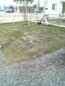 shibahuのブログ-6/10芝刈り