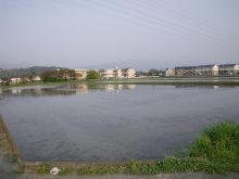 shibahuのブログ