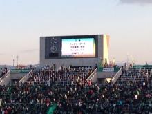shibafuのブログ-信■グリーン?